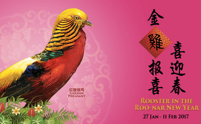 Rooster in the Roo-nar New Year