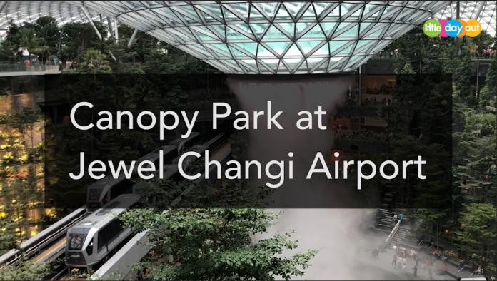 canopypark-jewel