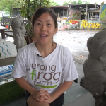 Chat with Chelsea Wan of Jurong Frog Farm