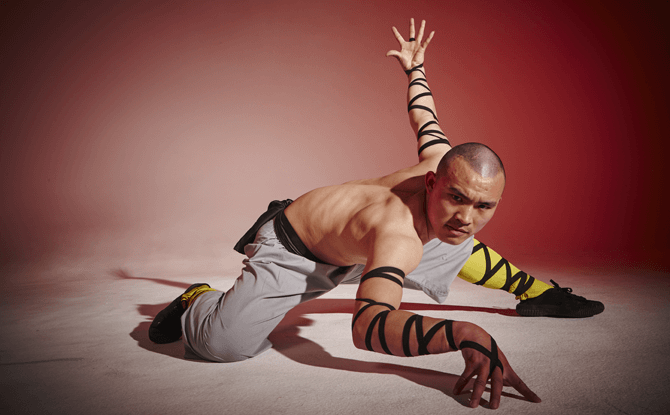 Shaolin monk martial arts
