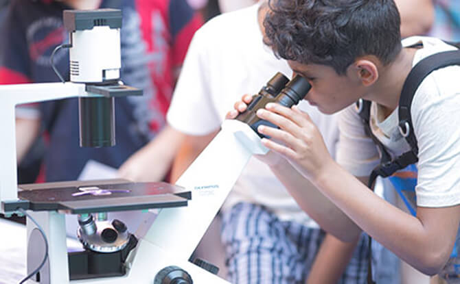 Singapore Science Festival
