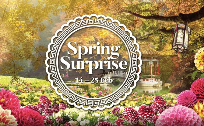 Spring Surprise 2018 1