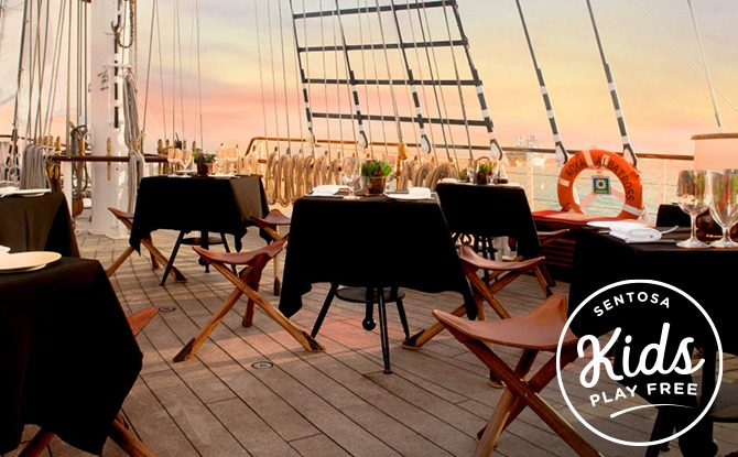Royal Albatross Sunset Sail Dinner Cruise