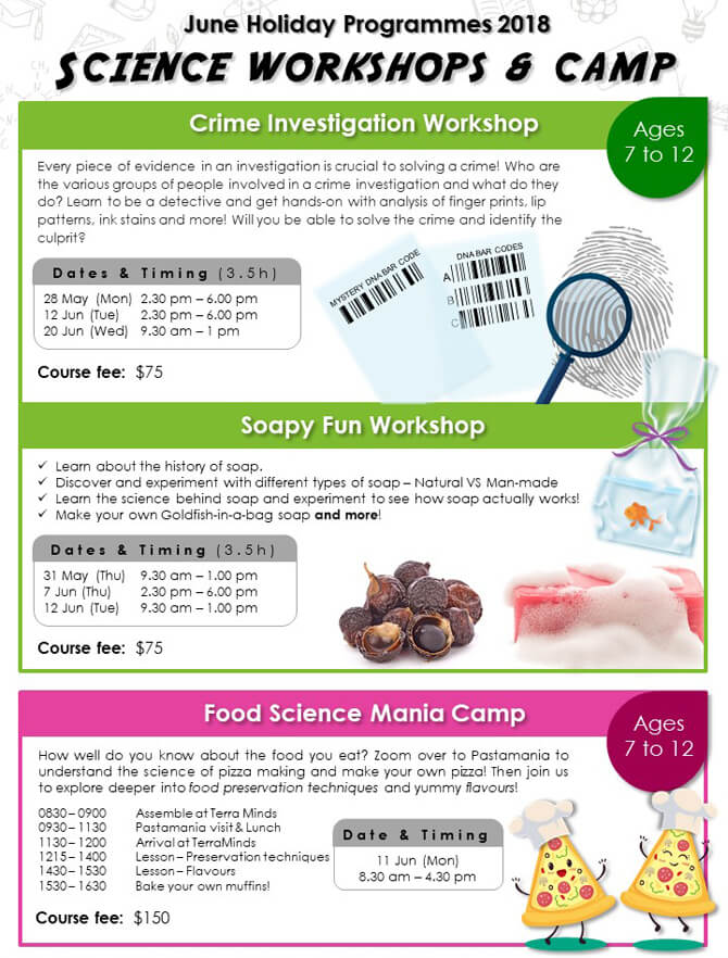 Terra Minds holiday programme food science