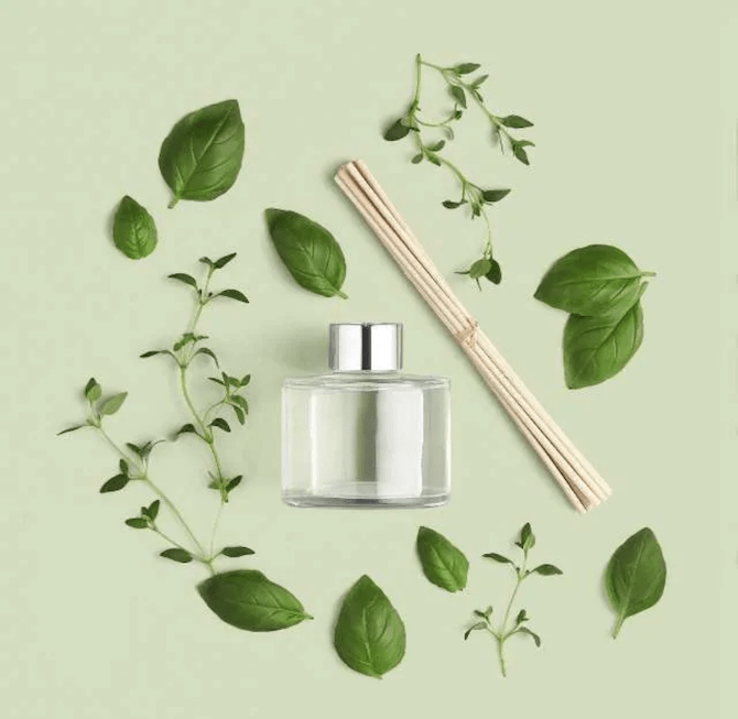 The Body Shop Basil & Thyme Reed Diffuser