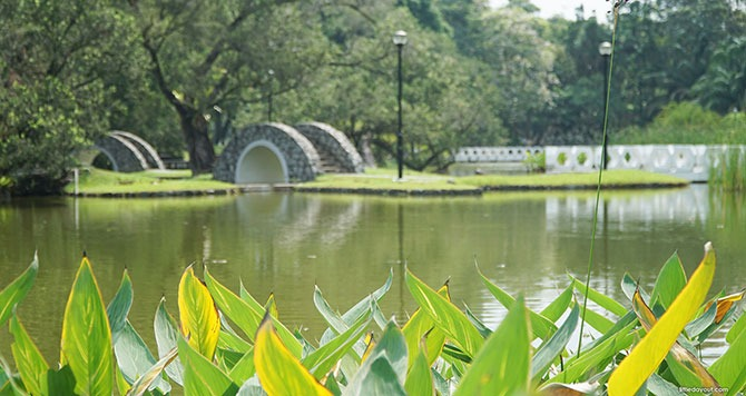 Toa Payoh Town Park - Singapore Virtual Background