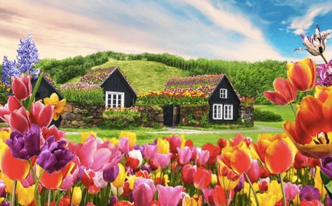 Tulipmania 2018