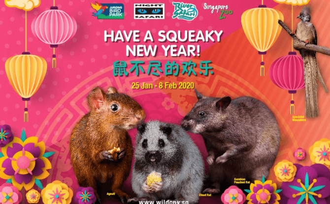 Have a Squeaky New Year!