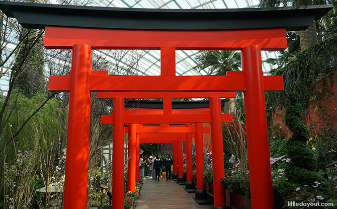 Torii gates at Gardens by the Bay, Sakura Matsuri 2019