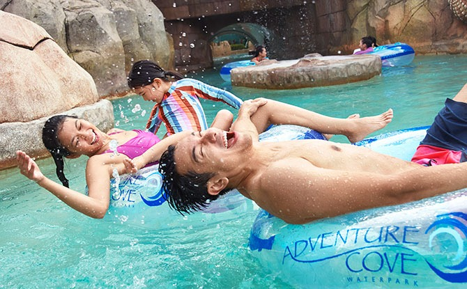 Adventure Cove Waterpark Reopening 12 May 2021