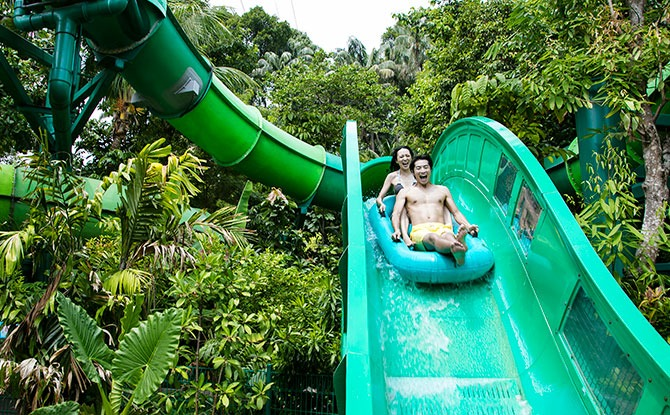 Adventure Cove Waterpark Reopens On 12 May 2021 Say Hi To The Fishes Once Again Little Day Out