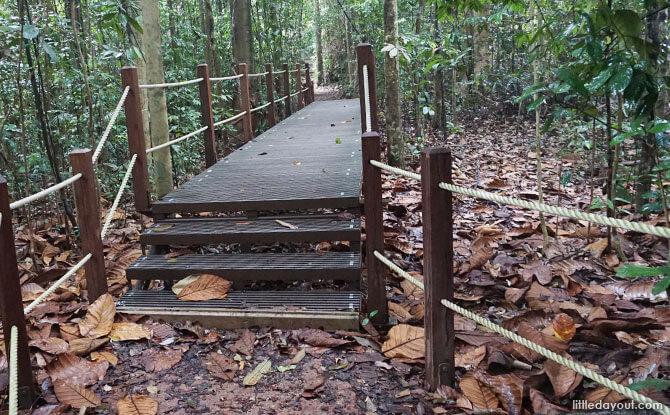 North View Hut Path