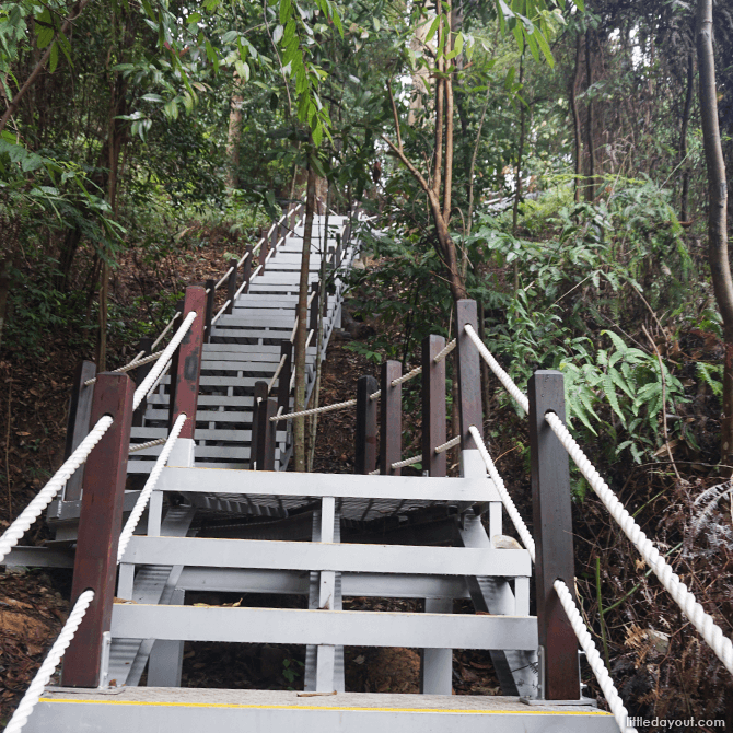 Stairs leading up to the North View Hut