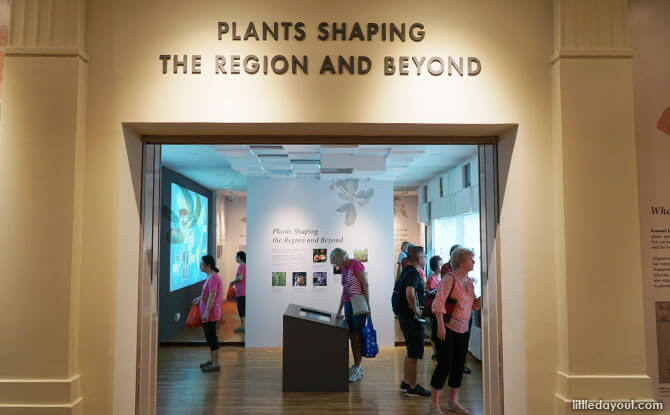 Plants Shaping the Region and Beyond, Centre for Ethnobotany