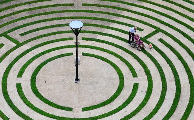 Tampines Maze Garden