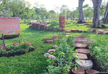 Cyclist Park Nature Playgarden At East Coast Park: Simple Fun With Nature