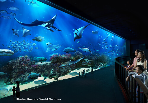 S.E.A. Aquarium, Resorts World Sentosa