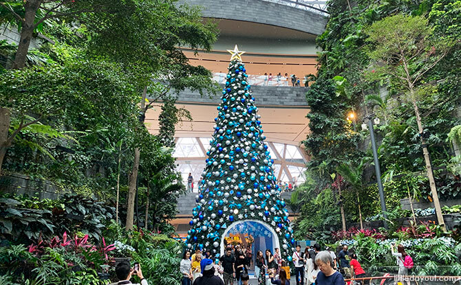 Enter the Shiseido Forest Valley under a 16-metre tall Christmas tree.
