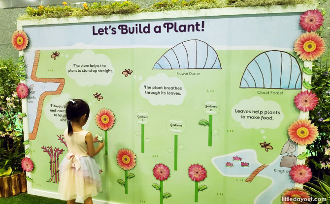 """Let's Build a Plant"" interactive wall"