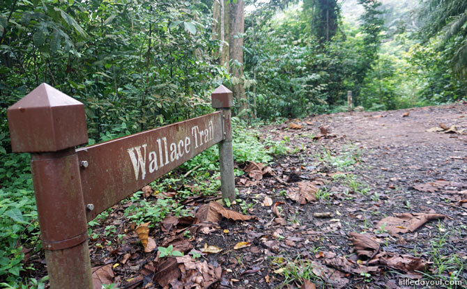 Entrance to the Wallace Trail