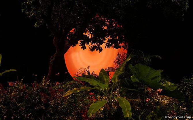 Fantasy Garden, Sunset