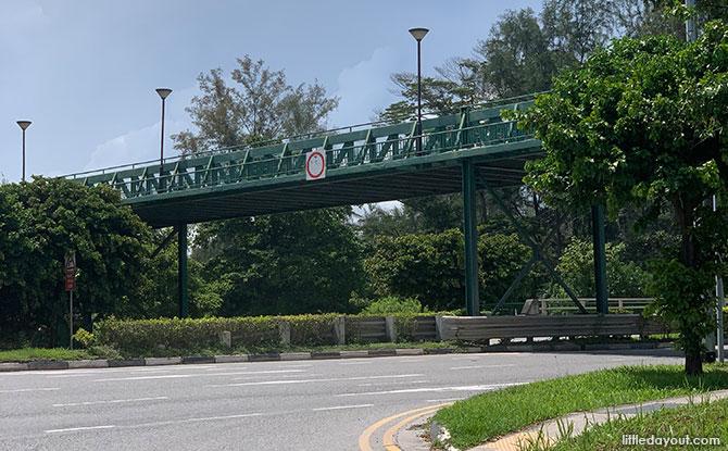 Bridge over Fort Road