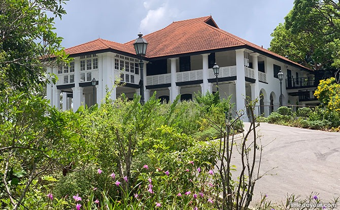7 Gallop Road: Inverturret - Botanical Art Gallery, Singapore Botanic Gardens