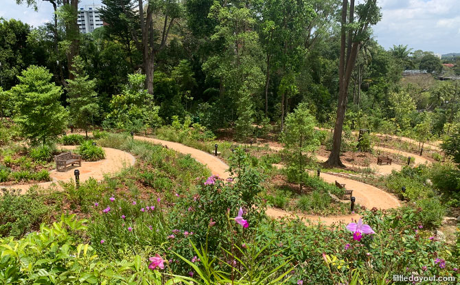 The Gallop Valley & Woollerton Gate: How To Get Singapore Botanic Gardens From Farrar Road