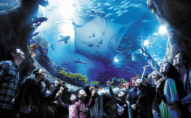 Oceanarium at Ocean Park