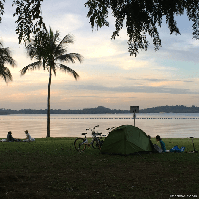 Camping at Pasir Ris Park