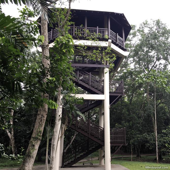 Pasir Ris Park Birdwatching Tower