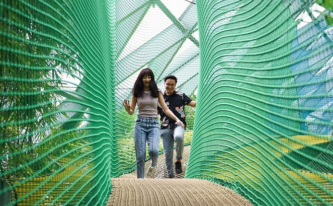 Manulife Bouncing Nets - Canopy Park