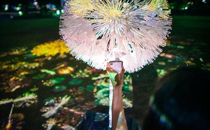 Interacting through Virtual Dandelion Fluff