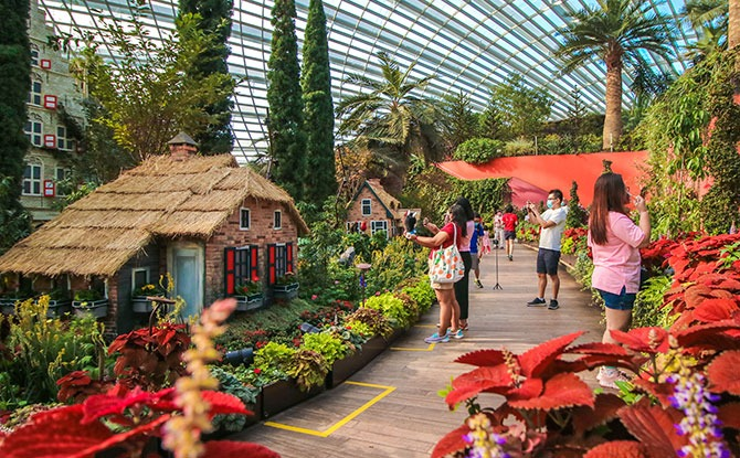 Flower Dome Reopening - European Landscape at the Flower Field