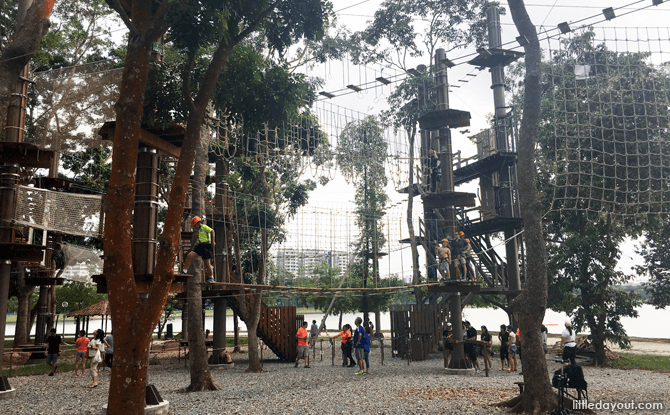 10 Things to Know Before Visiting Forest Adventure