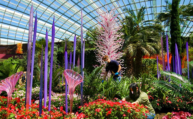 """Glass Sculptures From """"Dale Chihuly: Glass In Bloom"""" Unveiled At Gardens By The Bay's Cooled Conservatories"""