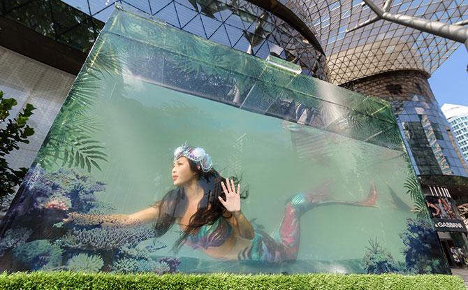e-ION-Orchard_Spring-Summer-2019_Aquatic-Garden-(3)