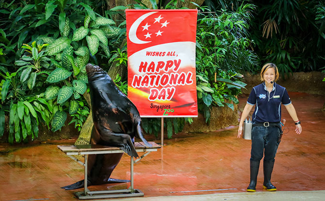 Things to Do for National Day 2018 in Singapore