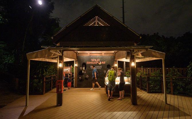 The Explorer Outpost at Night Safari Singapore