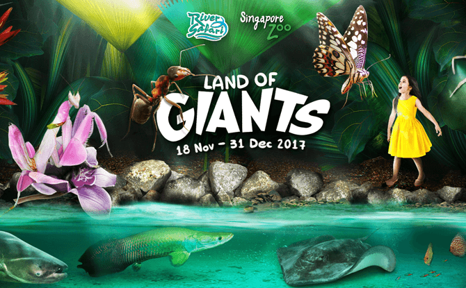 Land of Giants, November and December School Holidays 2017 at Singapore Zoo and River Safari