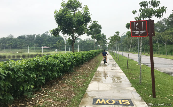 Park Connector from Lorong Halus to Pasir Ris Town