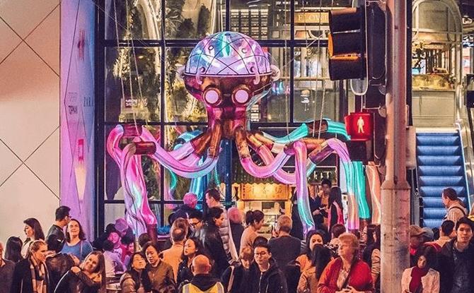Octopoda. Image courtesy of amigo and amigo