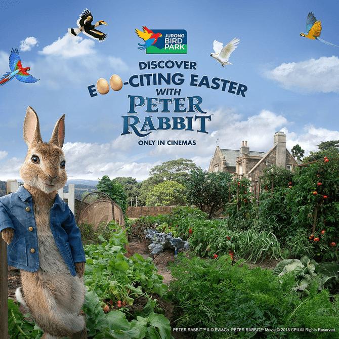 Peter Rabbit at Jurong Bird Park