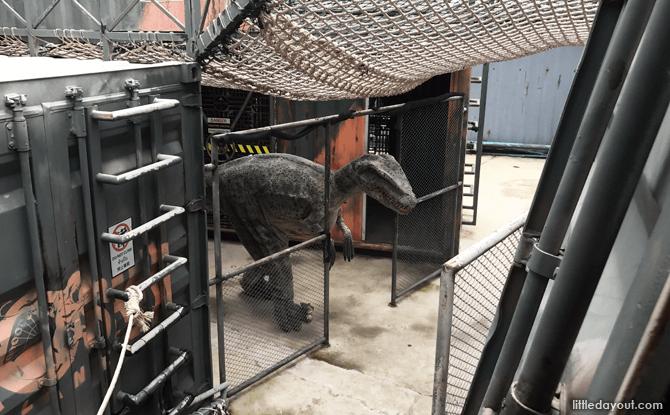 Raptor X-treme