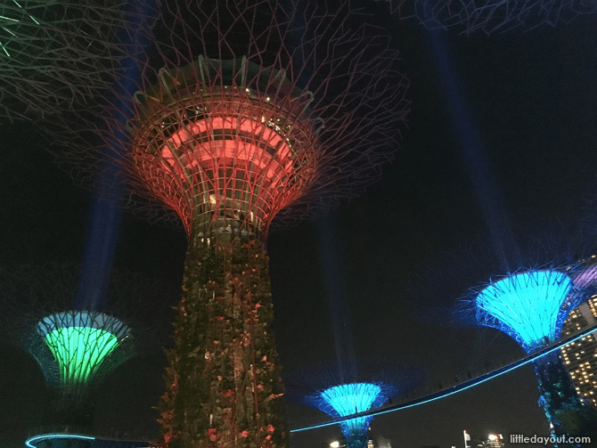 Sabertrees, Gardens by the Bay, Supertree Grove