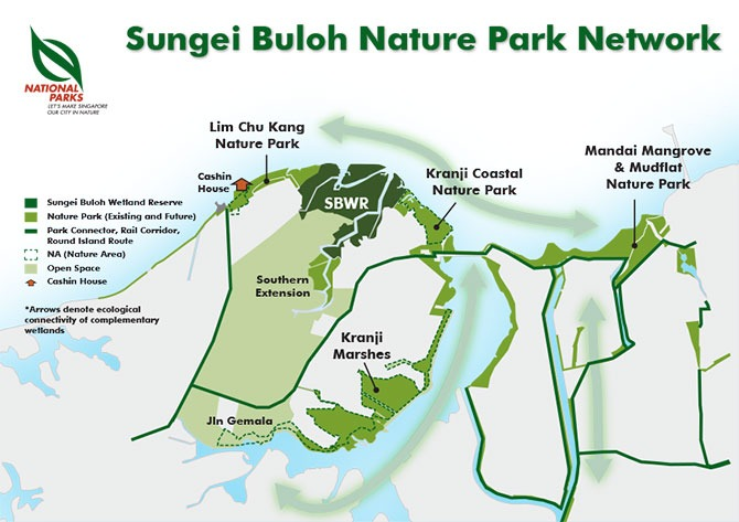 Sungei Buloh Nature Park Network: Strengthening The Green Spaces Along Singapore's Northern Coast