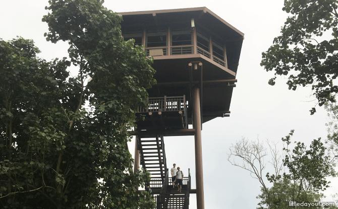 Sungei Buloh Aerie Tower