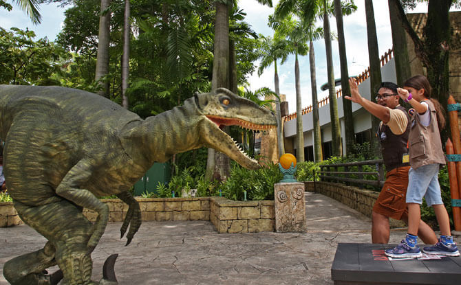 Raptor Training School