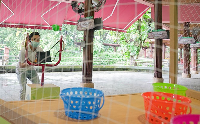 September school holiday activities at the Jurong Bird Park