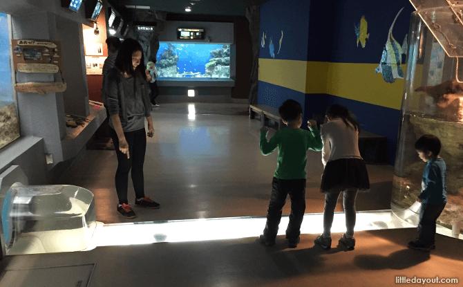 Inside the Otaru Aquarium